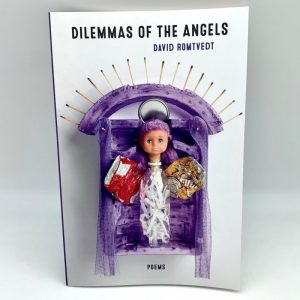 Dilemmas of Angels by David Romtvedt collected poemsbook